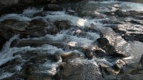 Härlig liten vattenfall i skog lager videofilmer