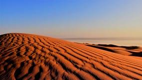 härlig ljus morgon För Dawn With Deserts arkivfoton