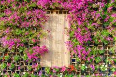 Härlig lodlinjeträdgård Royaltyfri Bild
