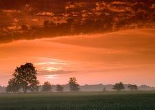 härlig lugna soluppgång Royaltyfri Foto