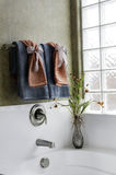 härlig lyx för badrum Arkivbild