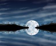 Härlig månskennatt Arkivbild