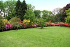 Härlig manicured gräsmatta i en sommarträdgård Royaltyfria Bilder