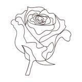 Härlig minsta fortlöpande linje rosdesignvektor stock illustrationer