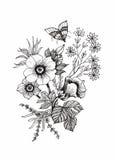 Härlig monokrom, isolerad svartvit blomma Hand-drog konturlinjer slaglängder stock illustrationer
