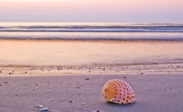 härlig morgon för strand arkivfoto