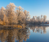 Härlig morgon på en Vorskla flod på den sena höstliga säsongen Royaltyfria Foton