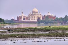 Härlig morgonsikt av Taj Mahal Palace med den Jamuna floden i förgrunden royaltyfria foton