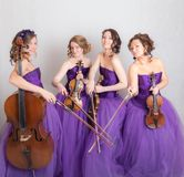 Härlig musikalisk kvartett royaltyfri foto