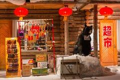 Härlig natt i den kinesiska snöbyn Fotografering för Bildbyråer