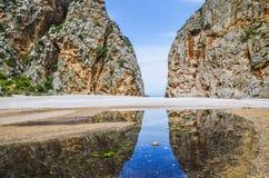 Härlig natur av Mallorca Royaltyfri Bild