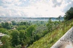 Härlig natur av Prague från en höjd Royaltyfri Foto