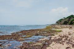 Härlig natur av Puerto Plata, Dominikanska republiken Arkivbilder