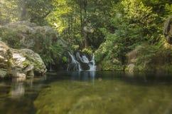 Härlig natur - flod i den Dihovo byn, Bitola, Makedonien royaltyfri foto