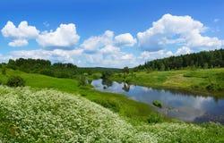 Härlig natur, panoramautsikt Flod Poksha Arkivfoton