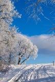 Härlig natur, vinter arkivbilder