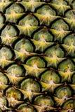 härlig naturlig ananastextur för bakgrund Arkivbild
