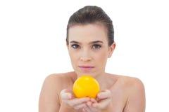 Härlig naturlig brun haired modell som erbjuder en apelsin Arkivbild