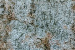 Härlig naturlig stenbakgrund bakgrundsdesignelement fyra vita snowflakes Royaltyfria Bilder