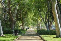 Härlig naturplats runt om Beverly Gardens Park Arkivbilder