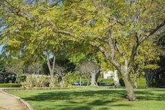 Härlig naturplats runt om Beverly Gardens Park Arkivfoton