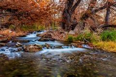 Härlig nedgånglövverk och silkeslena vattenfall på Guadalupe River, Texas Arkivfoton