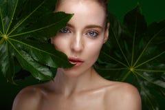 Härlig ny flicka med perfekt hud, naturligt smink och gröna sidor Härlig le flicka royaltyfria foton