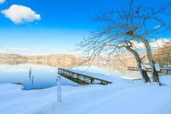 Härlig ny insnöad vinter runt om bergsjön och tren Arkivfoto