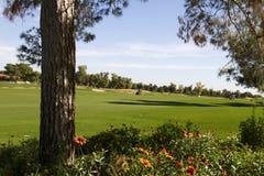 Härlig ny modern golfbanafarled i Arizona Arkivfoto