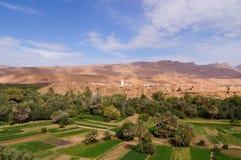 Härlig oas i Tineghir, Marocko royaltyfria bilder