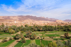 Härlig oas i Tineghir, Marocko arkivbild