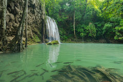 Härlig och mycket trevlig grön vattenfall för avkoppling Royaltyfri Foto