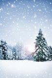 Härlig och snöig vinterskogbakgrund Fotografering för Bildbyråer