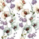 Härlig orkidé flower5 Arkivbilder