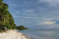 Härlig palmträd fodrad vit sandstrand Arkivbild