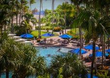 Härlig palmträd som skjutas på Palm Beach i Aruba Royaltyfri Bild
