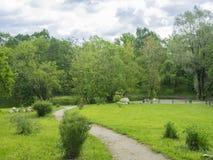 Härlig panorama av den gröna staden parkerar på gryning Royaltyfria Bilder