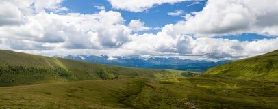 Härlig panorama av fjällängar i sommar Royaltyfria Foton