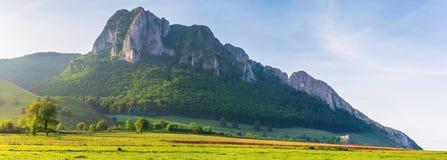 Härlig panorama av Rumänien bygd arkivfoton