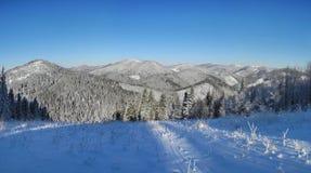 Härlig panoramautsikt av de Carpatian bergen under snen Arkivfoto