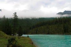 Härlig panoramautsikt på den dimmiga Belukha för skog för Kucherla bergsjö och bergnationalparken, Altai republik, Sibirien, fotografering för bildbyråer