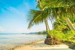 Härlig paradisö med stranden och havet Fotografering för Bildbyråer