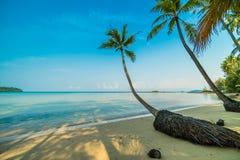 Härlig paradisö med stranden och havet Royaltyfri Bild
