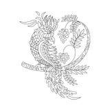 Härlig paradisfågel på en filial med bär Färga för K Royaltyfri Bild