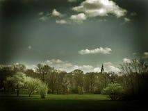härlig park Arkivfoton