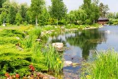 Härlig park Arkivbild