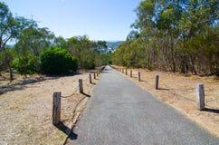 Härlig parklandkulle med den långa vägen på den Albury botaniska trädgården i New South Wales, Australien fotografering för bildbyråer