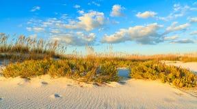 Härlig strand Royaltyfri Fotografi