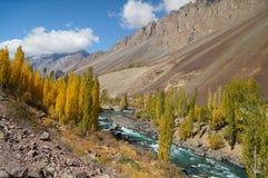 Härlig Phandar flod i nordliga Pakistan Arkivbild