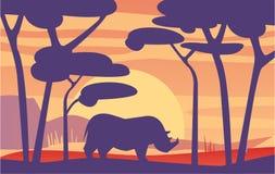Härlig plats av naturen, fridsamt afrikanskt landskap med noshörningen på aftontid, mall för banret, affisch royaltyfri illustrationer